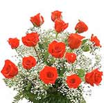 send valentine's flowers __15 red roses