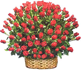 Flowers to India : Red Roses in Basket Arrangement
